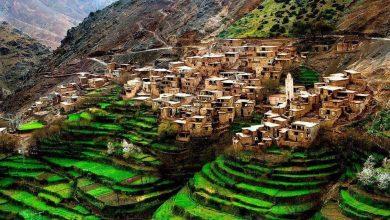 صنف مؤشر أداء المناخ في العالم، المغرب من بين البلدان الثلاثة الأفضل في الترتيب بعد كل من السويد والدنمارك. وضمن تقريرها حول ترتيب سنة 2020